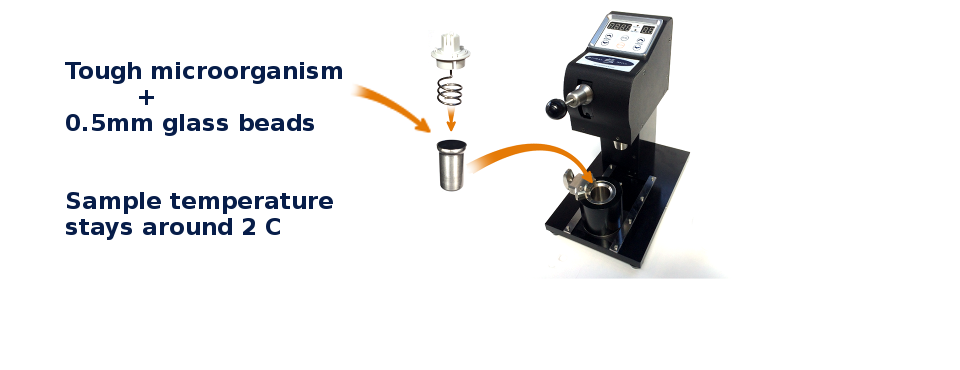 yeast lysis tool