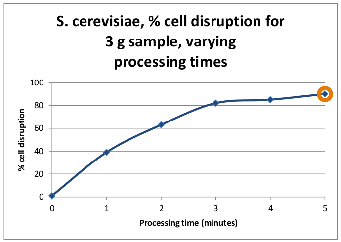 saccharomyces cerevisiae disruption vs time